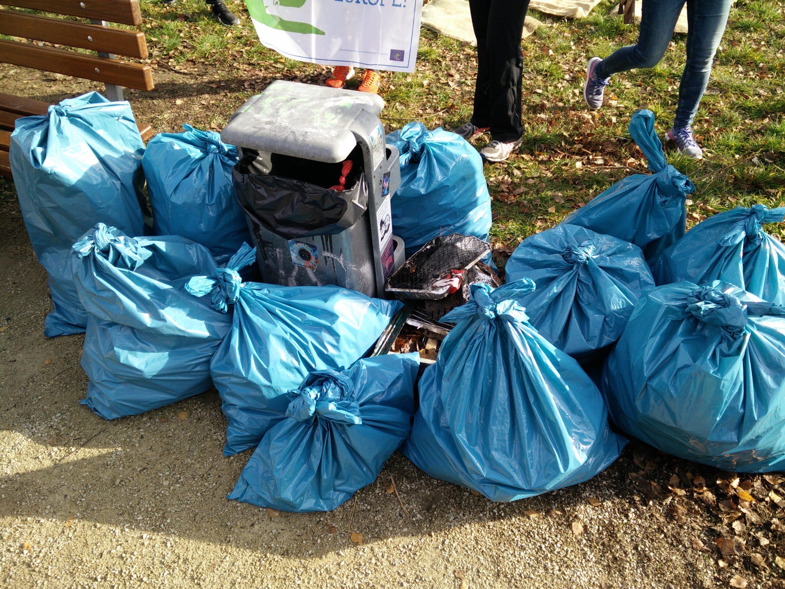 Cleanup Marienberg park